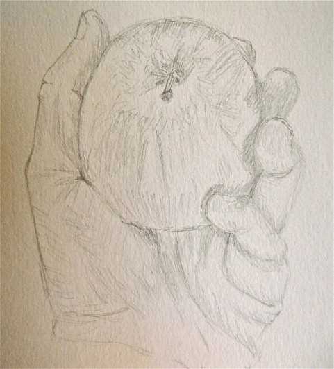 Sketch of Hand and Apple